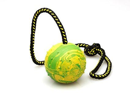 Gappay Rope and Ball Toy