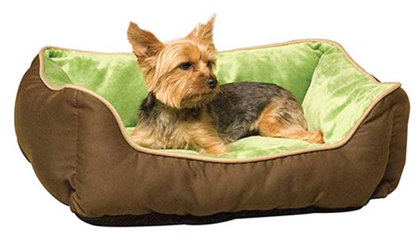 unique dog beds for small dogs