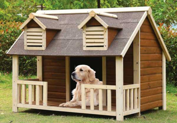 Best Dog Houses For Large Dogs
