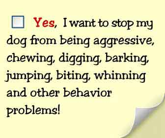 Secrets to dog training solution