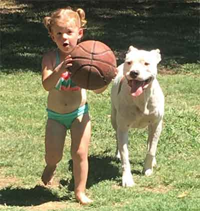 white pitbull dog and girl
