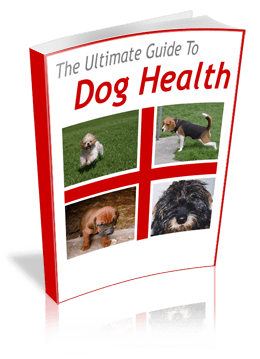 dog health ultimate guide