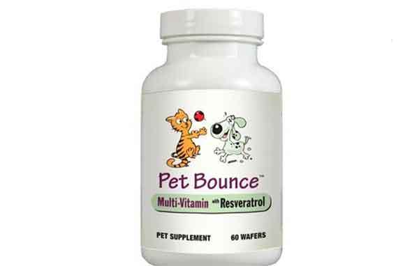 pet bounce multivitamin review