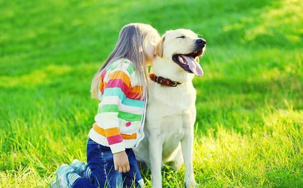 tips to strengthen bond with your dog