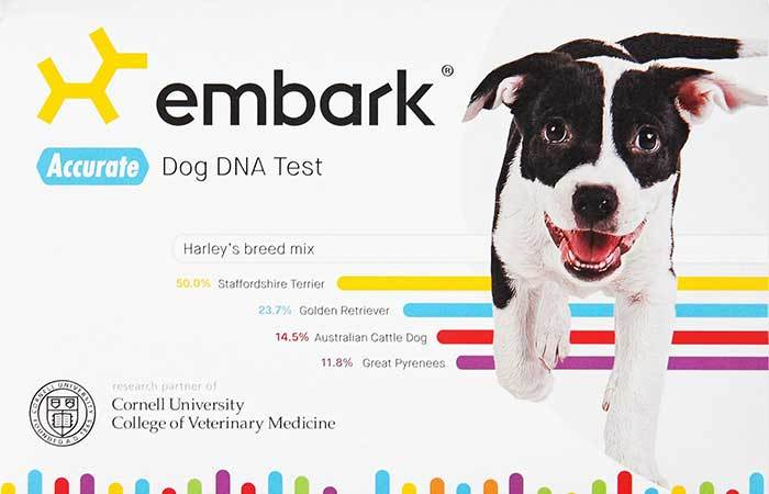 embark dog dna test kit full review
