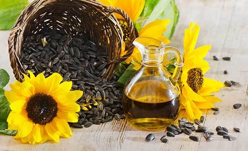 Can I give my dog safflower oil?