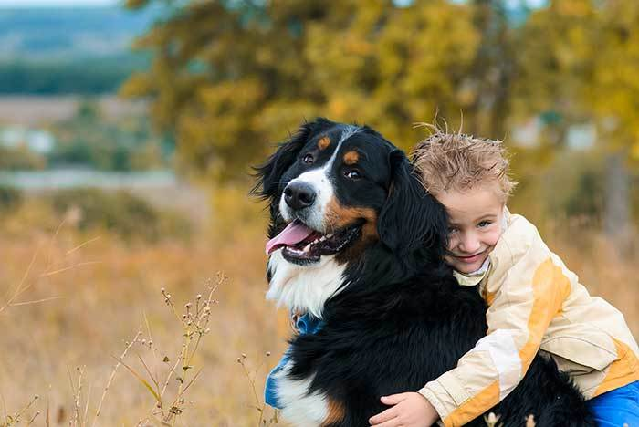 Big Dog Names – The Ultimate List [650+ Awesome Names]