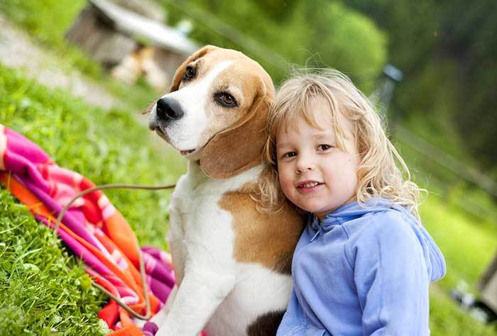do beagles get along with children?