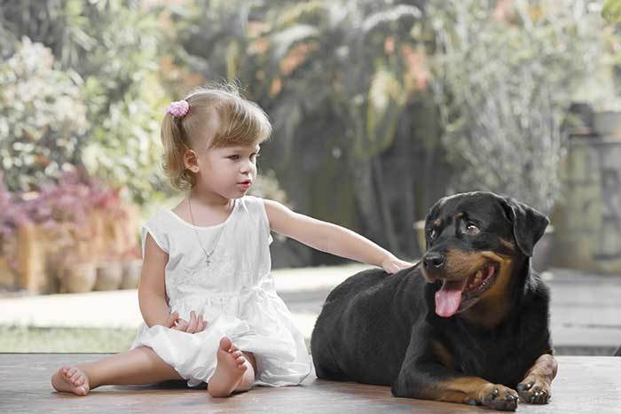 are rottweilers good with children?