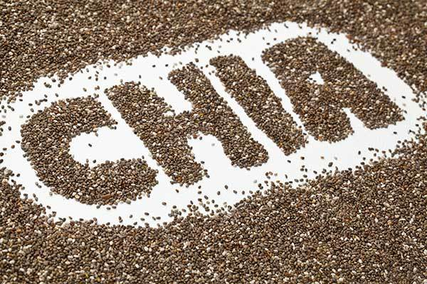 Benefits of Chia Seeds for Dogs