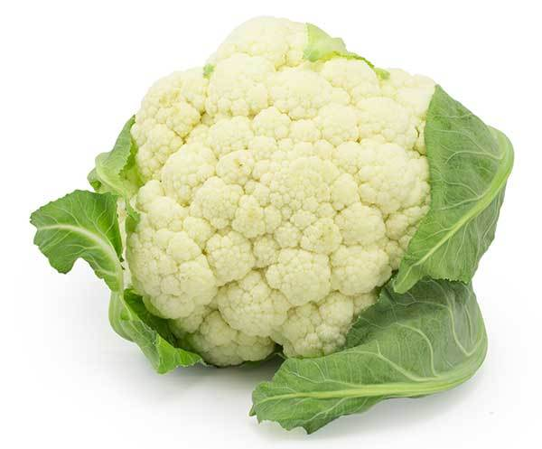 White Cauliflower for Dogs