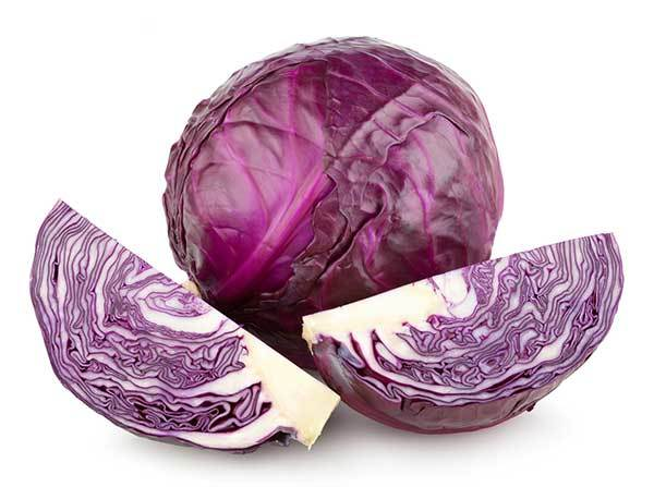 red cabbage for dogs