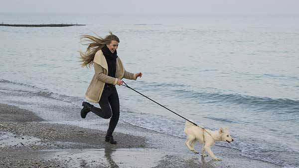 dog with her owner running at the beach