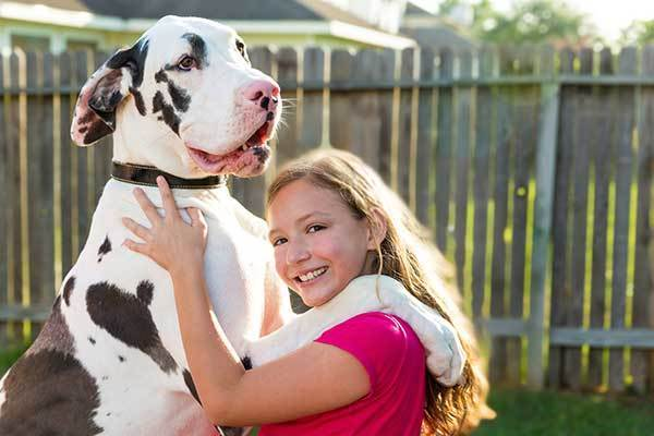 girl hugging a large dog
