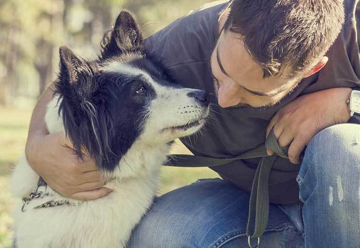 how to tell if your dog loves you?