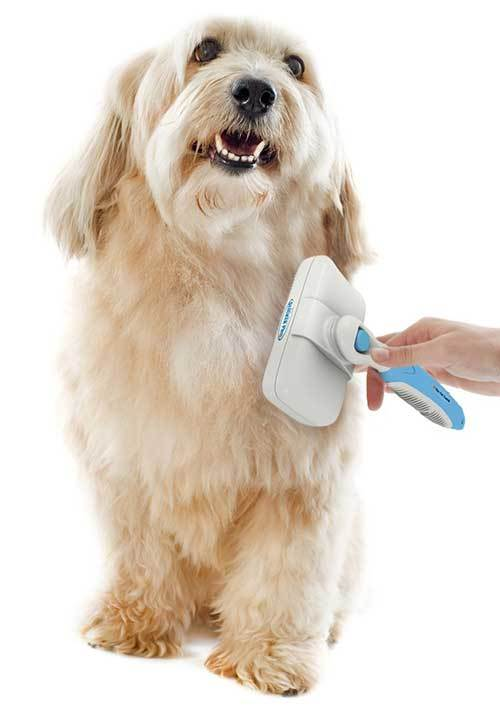 slicker brush for dogs